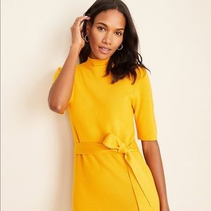 NWT!!! Ann Taylor Sweater dress